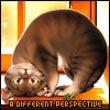 Аватар KittyKat